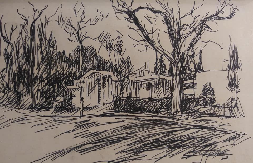 "Henia Flynn's ""Trees"" Ink on Paper"